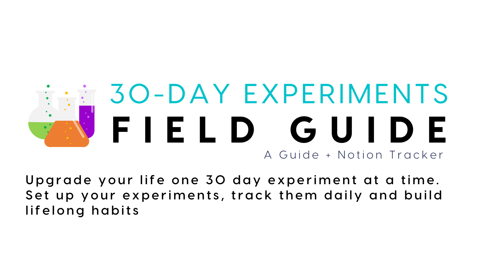 30 Day Experiment Field Guide + Template