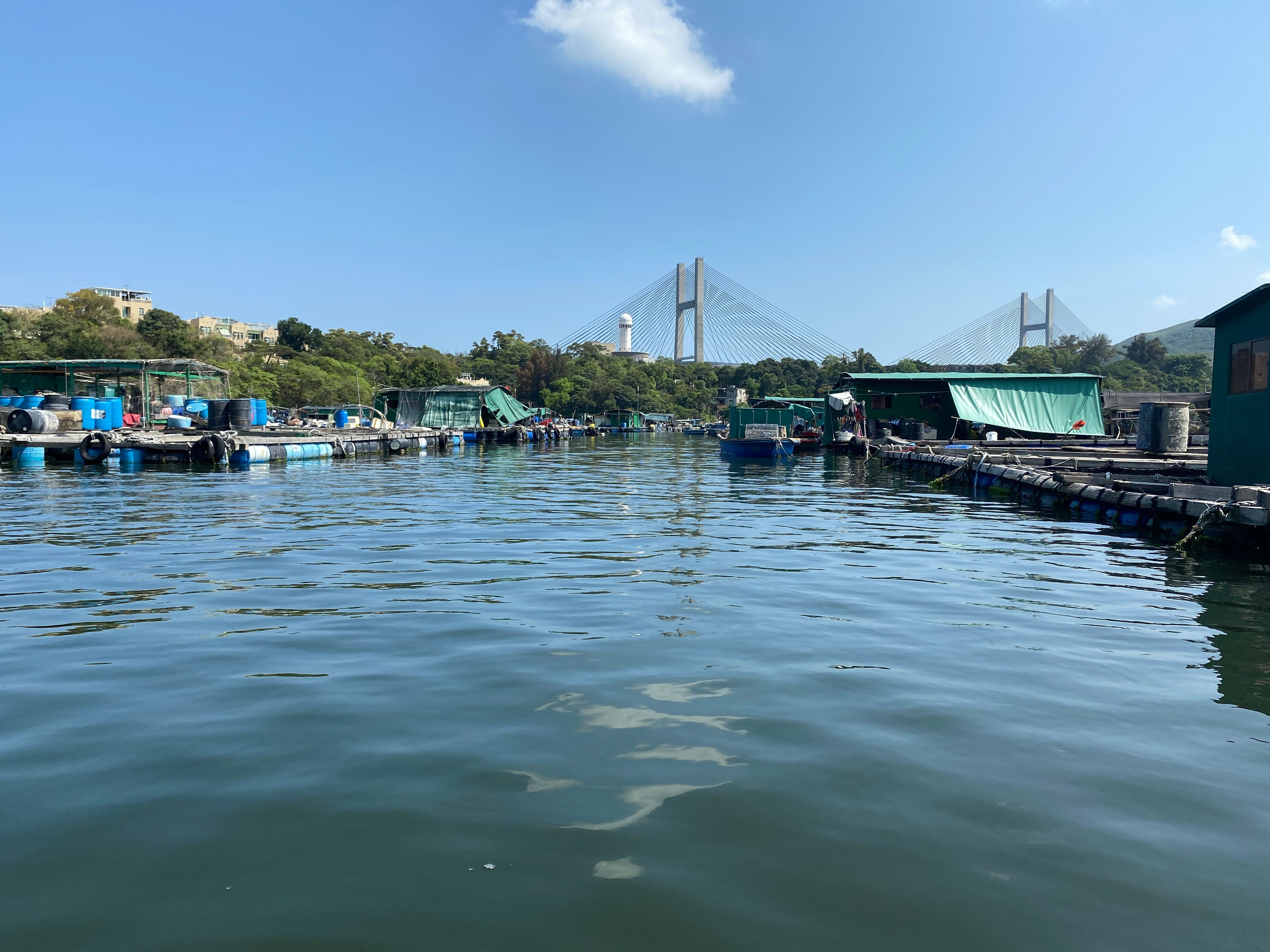Mini-expedition In Ma Wan/park Island, Visiting The Marine Fish Farms