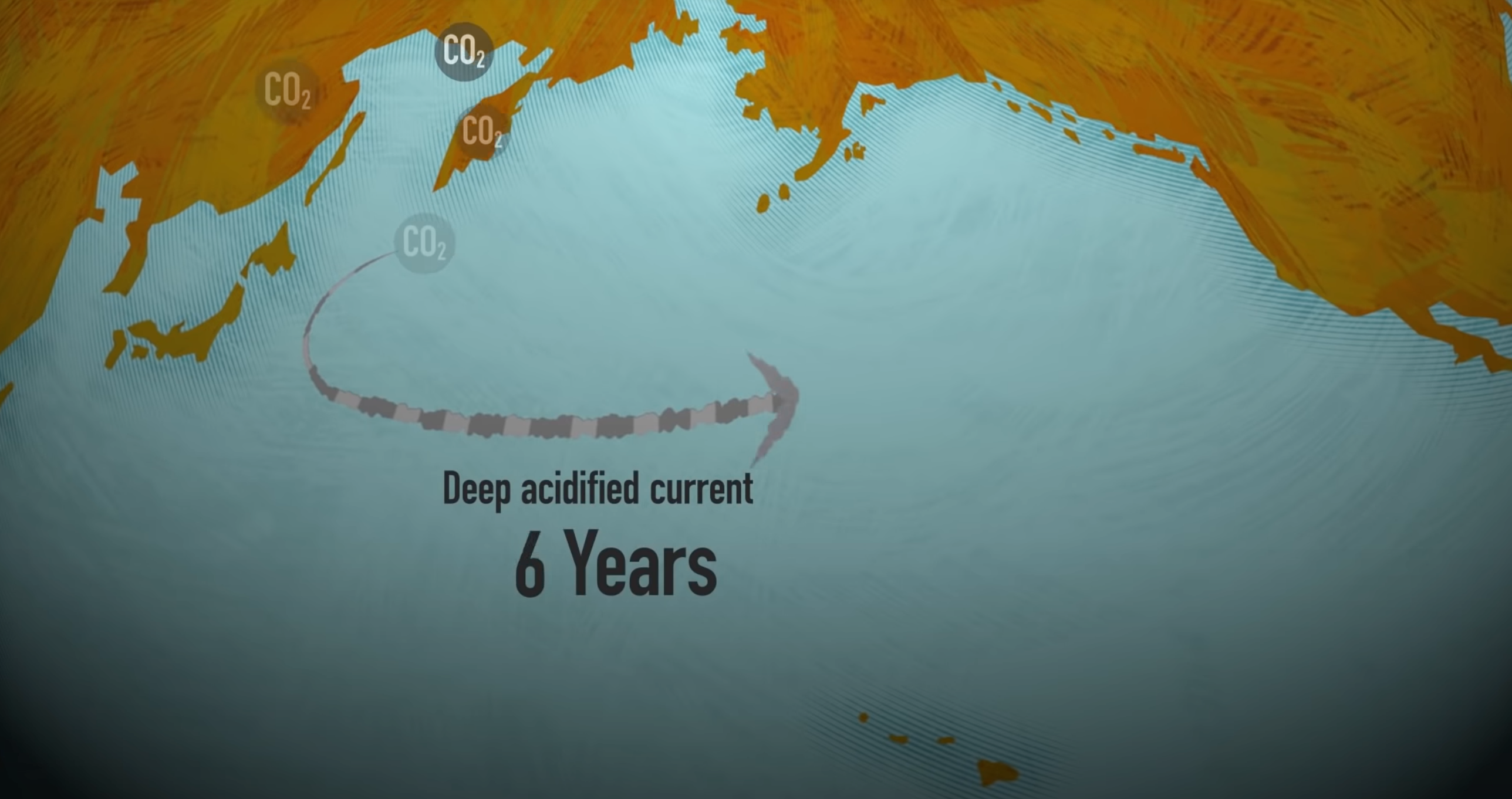Oregon ocean acidification, oysters, crabs, salmons