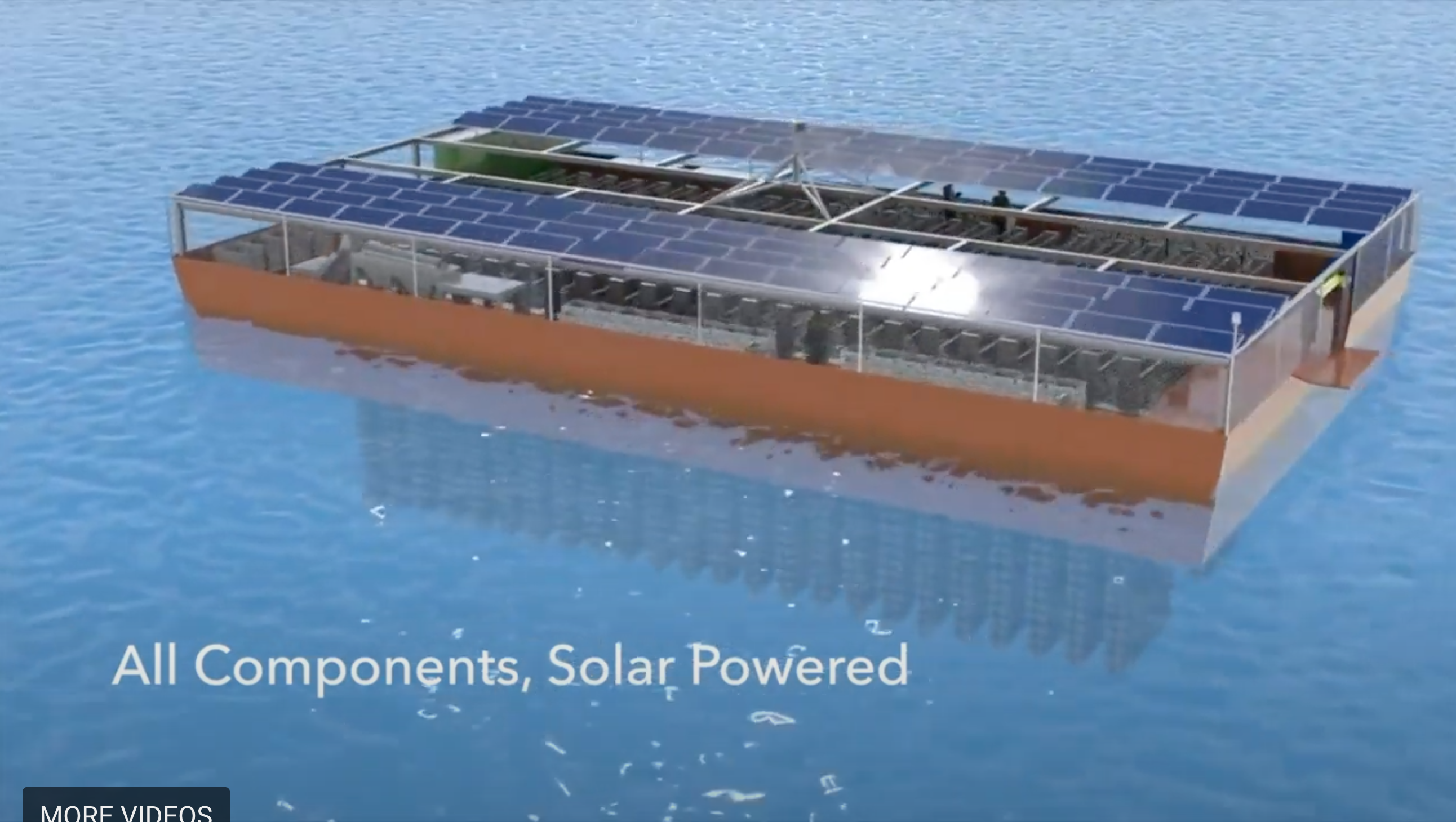 Solar Oysters