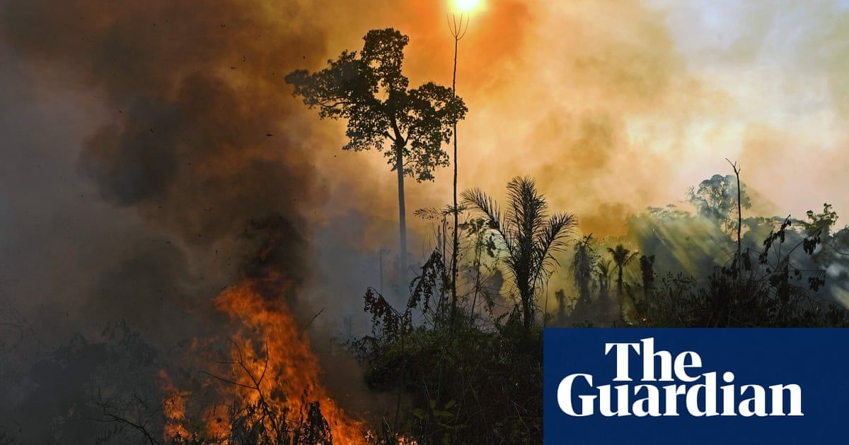 Top scientists warn of 'ghastly future of mass extinction' and climate disruption