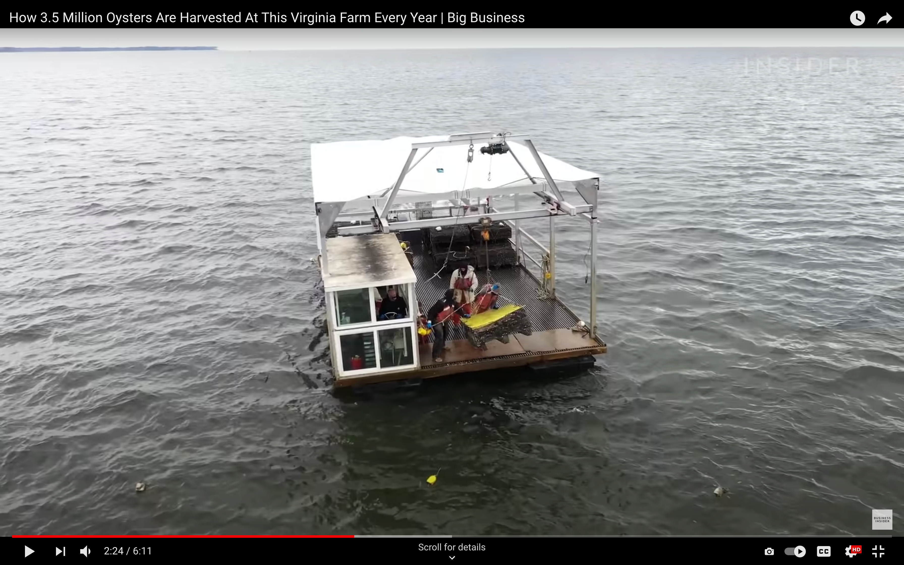 Oyster production in Virginia