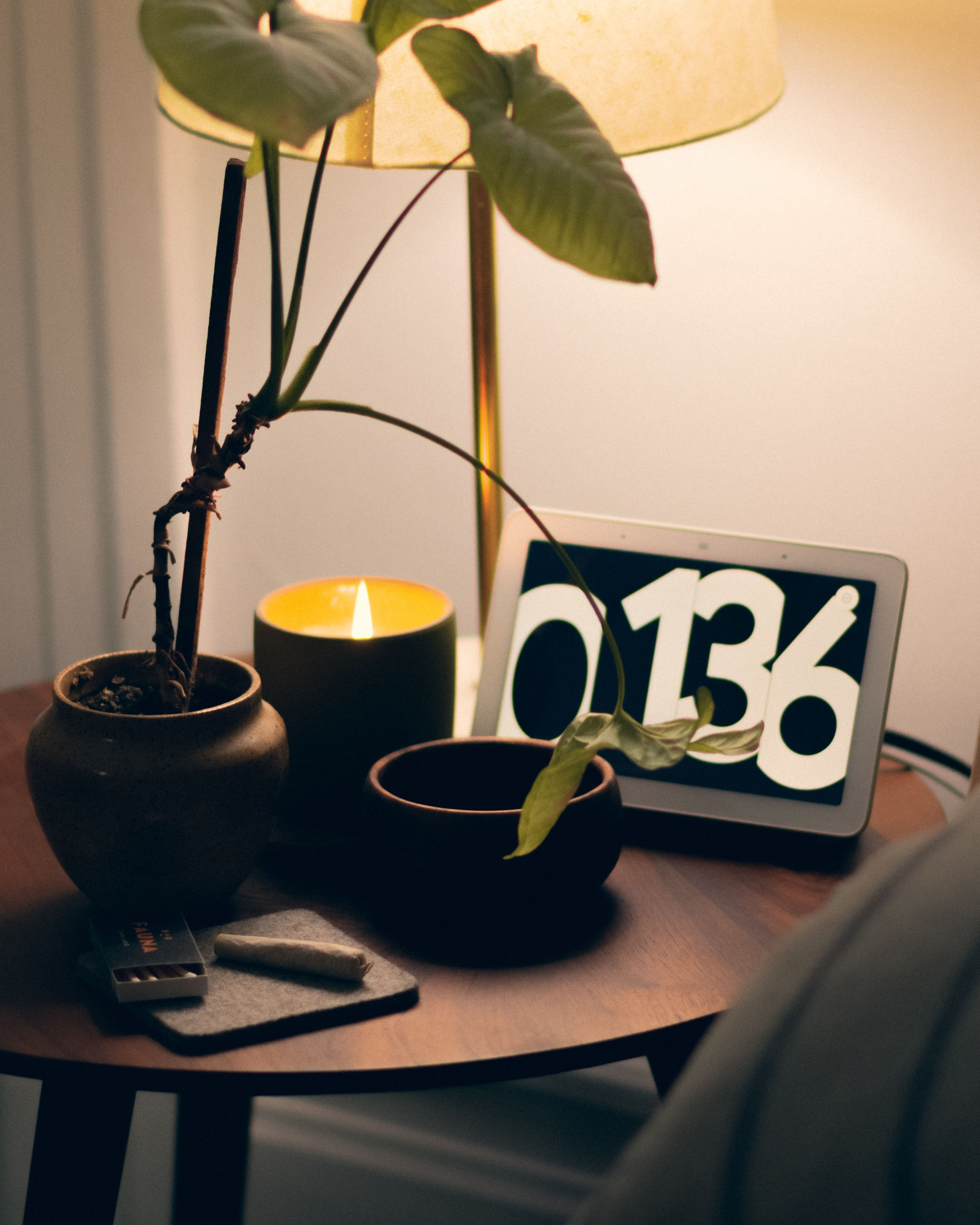 How to Start a Ceramic Houseplant Ecommerce Store in 2021
