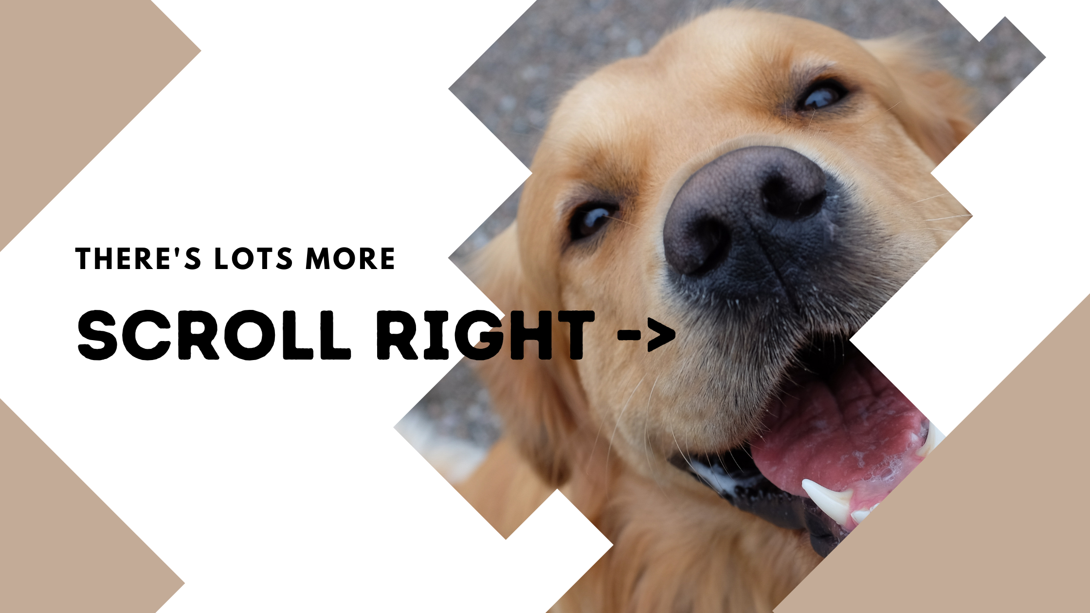 There's more - scroll right →