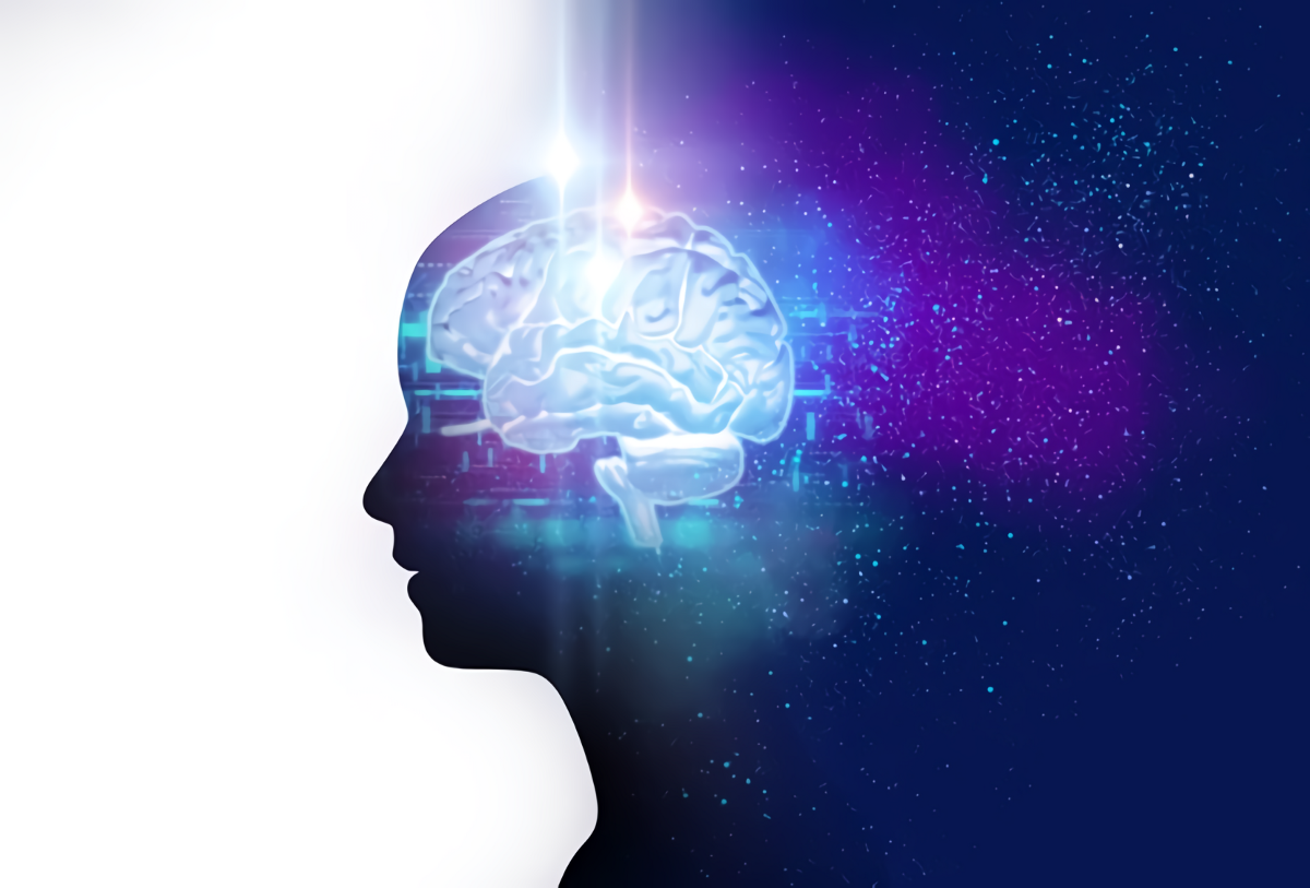 How to learn neuroscience: An introductory guide